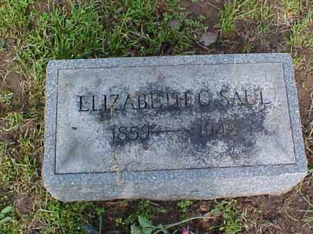 SAUL, ELIZABETH C. - Meigs County, Ohio | ELIZABETH C. SAUL - Ohio Gravestone Photos