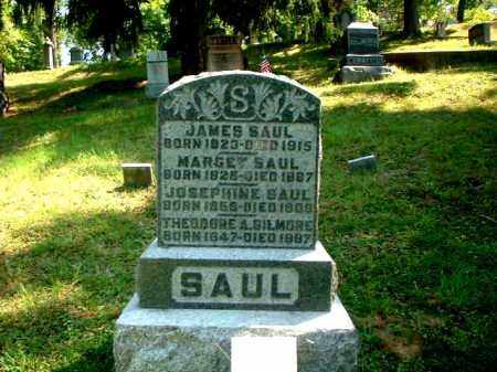 SAUL, JAMES - Meigs County, Ohio | JAMES SAUL - Ohio Gravestone Photos