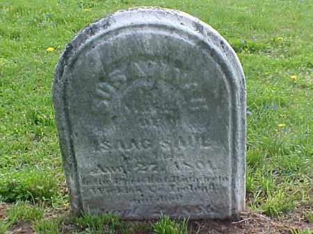 SHARF SAUL, SUSANNAH - Meigs County, Ohio | SUSANNAH SHARF SAUL - Ohio Gravestone Photos