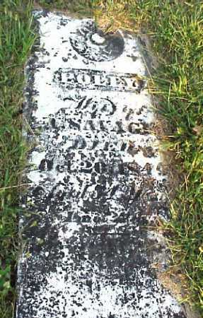 SAVAGE, POLLY - Meigs County, Ohio | POLLY SAVAGE - Ohio Gravestone Photos