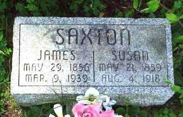SAXTON, JAMES - Meigs County, Ohio | JAMES SAXTON - Ohio Gravestone Photos