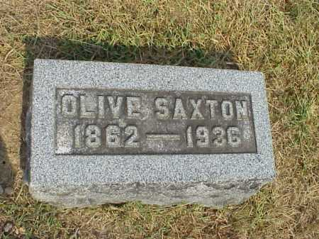 SAXTON, OLIVE - Meigs County, Ohio | OLIVE SAXTON - Ohio Gravestone Photos