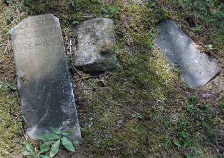 SCHREIBER, CLARENCE - Meigs County, Ohio | CLARENCE SCHREIBER - Ohio Gravestone Photos