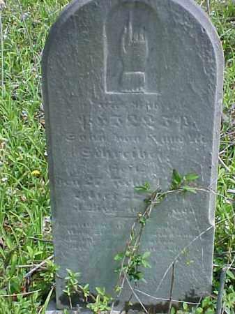SCHREIBER, PHILIP - Meigs County, Ohio | PHILIP SCHREIBER - Ohio Gravestone Photos