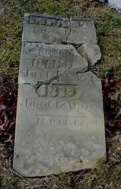 SCHREIBLEAR, ELIZABETH - Meigs County, Ohio | ELIZABETH SCHREIBLEAR - Ohio Gravestone Photos