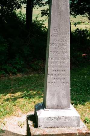 SCHREIBLEAR, ELI - Meigs County, Ohio | ELI SCHREIBLEAR - Ohio Gravestone Photos