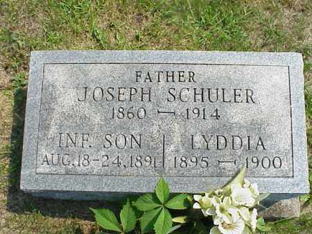 SCHULER, LYDDIA - Meigs County, Ohio | LYDDIA SCHULER - Ohio Gravestone Photos