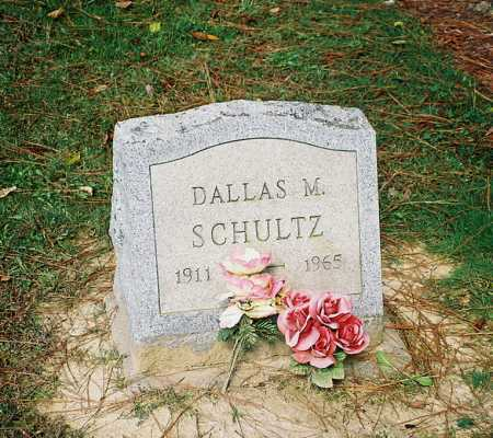 SCHULTZ, DALLAS M. - Meigs County, Ohio | DALLAS M. SCHULTZ - Ohio Gravestone Photos