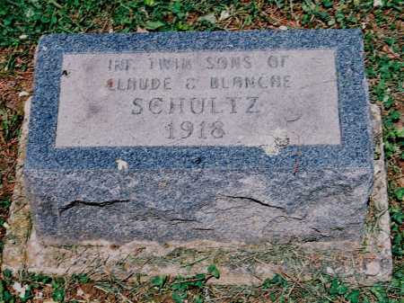 SCHULTZ, INFANT TWIN SONS - Meigs County, Ohio | INFANT TWIN SONS SCHULTZ - Ohio Gravestone Photos