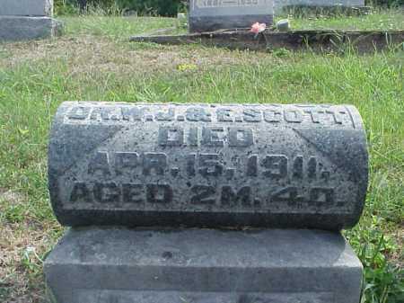 SCOTT, WILLIAM - VIEW 2 - Meigs County, Ohio | WILLIAM - VIEW 2 SCOTT - Ohio Gravestone Photos