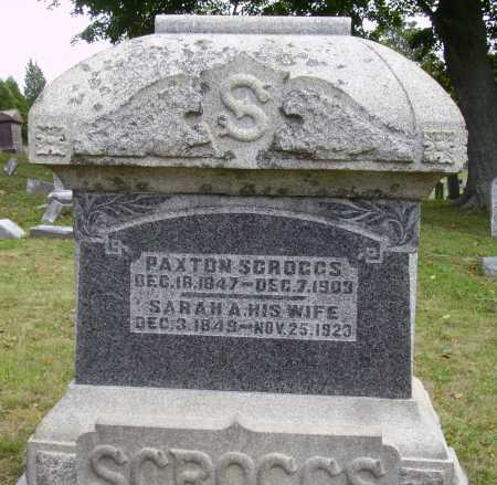 SCROGGS, SARAH A. - OVERALL VIEW - Meigs County, Ohio | SARAH A. - OVERALL VIEW SCROGGS - Ohio Gravestone Photos