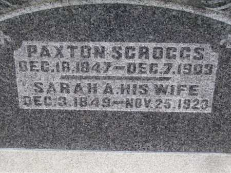 SCROGGS, SARAH - CLOSE VIEW - Meigs County, Ohio | SARAH - CLOSE VIEW SCROGGS - Ohio Gravestone Photos