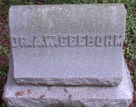 SEEBOHM, A.W. DR. - Meigs County, Ohio | A.W. DR. SEEBOHM - Ohio Gravestone Photos