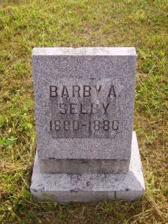 SELBY, BARBY A. - Meigs County, Ohio | BARBY A. SELBY - Ohio Gravestone Photos