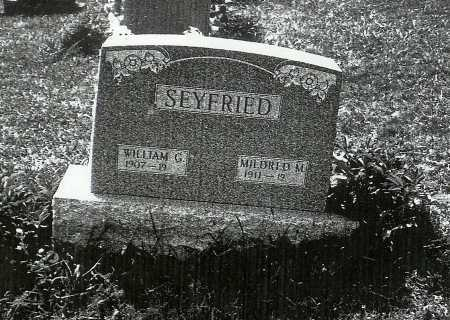 SEYFRIED, WILLIAM G. - Meigs County, Ohio | WILLIAM G. SEYFRIED - Ohio Gravestone Photos