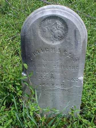 SHILLING, MICHAEL - Meigs County, Ohio   MICHAEL SHILLING - Ohio Gravestone Photos