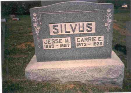 SILVUS, JESSE M. - Meigs County, Ohio | JESSE M. SILVUS - Ohio Gravestone Photos