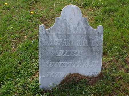 SIMMONS, LUTHER, DR. - Meigs County, Ohio | LUTHER, DR. SIMMONS - Ohio Gravestone Photos
