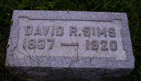 SIMS, DAVID R. - Meigs County, Ohio | DAVID R. SIMS - Ohio Gravestone Photos
