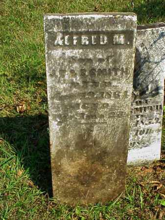 SMITH, ALFRED M. - Meigs County, Ohio | ALFRED M. SMITH - Ohio Gravestone Photos