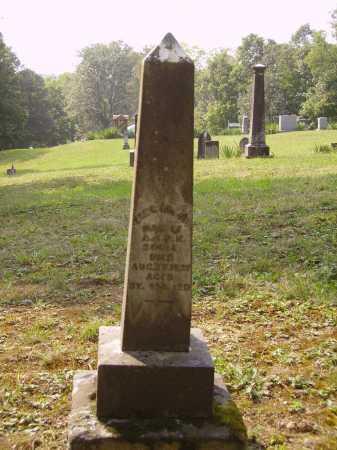 SOULE, ELECTA A. MONUMNET - Meigs County, Ohio | ELECTA A. MONUMNET SOULE - Ohio Gravestone Photos