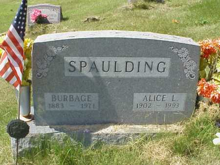 SPAULDING, ALCIE L. - Meigs County, Ohio | ALCIE L. SPAULDING - Ohio Gravestone Photos