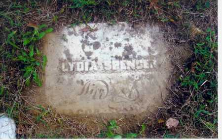 SPENCER, LYDIA - Meigs County, Ohio | LYDIA SPENCER - Ohio Gravestone Photos