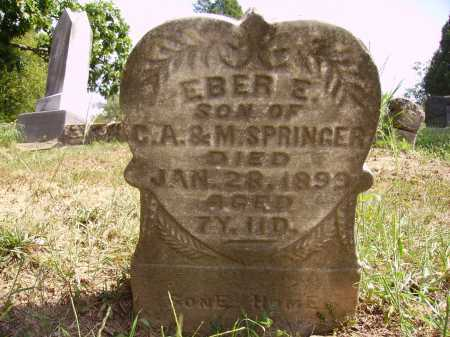 SPRINGER, EBER E. - Meigs County, Ohio | EBER E. SPRINGER - Ohio Gravestone Photos