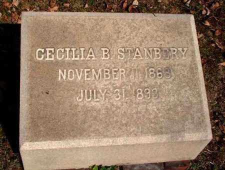 STANBERY, CECILIA B. - Meigs County, Ohio | CECILIA B. STANBERY - Ohio Gravestone Photos