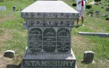STANSBURY, ELIZA WILSON - Meigs County, Ohio | ELIZA WILSON STANSBURY - Ohio Gravestone Photos