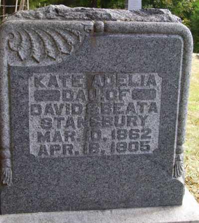 STANSBURY, KATE ADELIA - Meigs County, Ohio | KATE ADELIA STANSBURY - Ohio Gravestone Photos