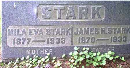 STARK, JAMES R. - Meigs County, Ohio | JAMES R. STARK - Ohio Gravestone Photos