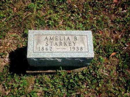 STARKEY, AMELIA B. - Meigs County, Ohio | AMELIA B. STARKEY - Ohio Gravestone Photos