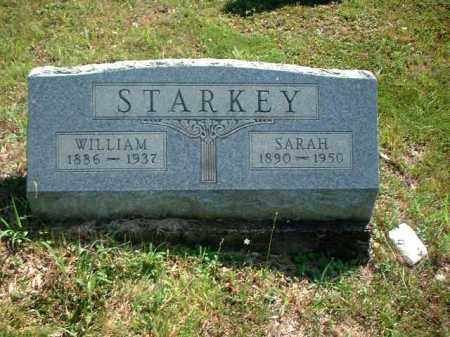 STARKEY, WILLIAM - Meigs County, Ohio | WILLIAM STARKEY - Ohio Gravestone Photos