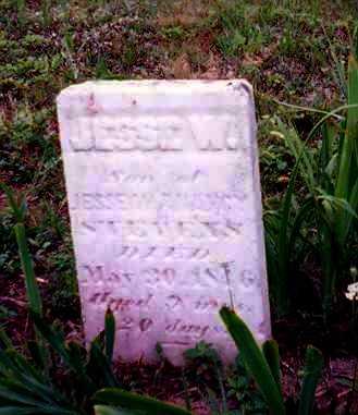 STEVENS, JESSE W. - Meigs County, Ohio | JESSE W. STEVENS - Ohio Gravestone Photos