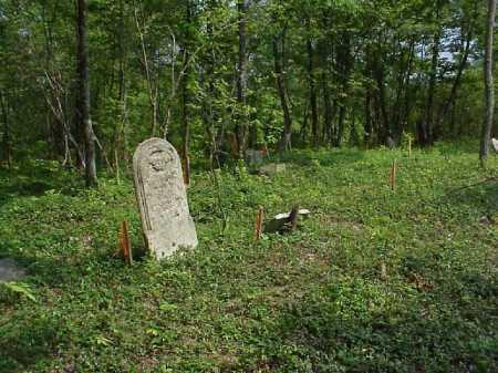 EATON STEVENSON, NANCY ANNE - Meigs County, Ohio | NANCY ANNE EATON STEVENSON - Ohio Gravestone Photos