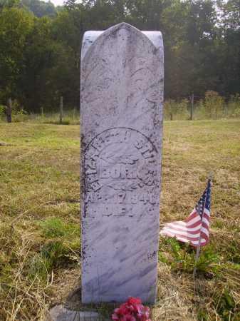 STILES, ELIZABETH - Meigs County, Ohio   ELIZABETH STILES - Ohio Gravestone Photos