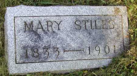STILES, MARY - Meigs County, Ohio | MARY STILES - Ohio Gravestone Photos