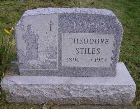 STILES, THEODORE - Meigs County, Ohio | THEODORE STILES - Ohio Gravestone Photos