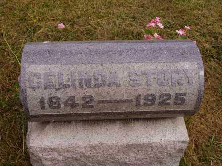 STORY, CELINDA - Meigs County, Ohio | CELINDA STORY - Ohio Gravestone Photos