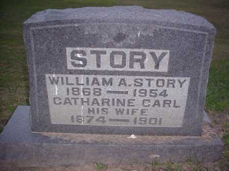 STORY, WILLIAM A. - Meigs County, Ohio | WILLIAM A. STORY - Ohio Gravestone Photos