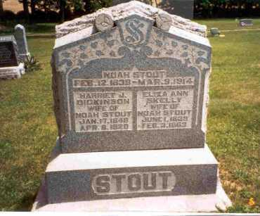 SKELLY STOUT, ELIZA ANN - Meigs County, Ohio | ELIZA ANN SKELLY STOUT - Ohio Gravestone Photos