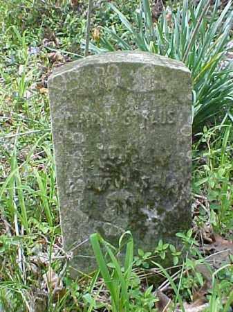 STRAUS, PHILIP - Meigs County, Ohio | PHILIP STRAUS - Ohio Gravestone Photos