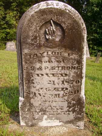 STRONG, TAYLOR F. - Meigs County, Ohio | TAYLOR F. STRONG - Ohio Gravestone Photos