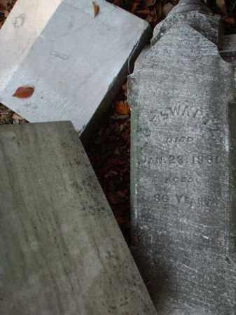 SWARTZ, C.F. - Meigs County, Ohio | C.F. SWARTZ - Ohio Gravestone Photos