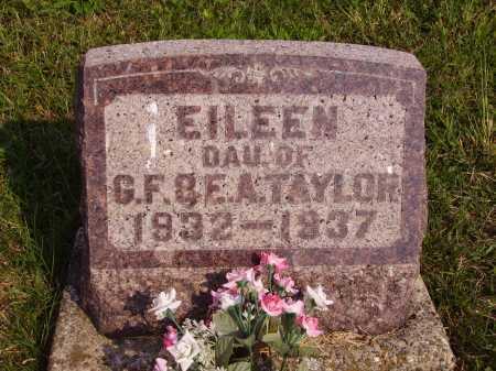 TAYLOR, EILEEN - Meigs County, Ohio   EILEEN TAYLOR - Ohio Gravestone Photos