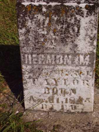 TAYLOR, HERMON M. - Meigs County, Ohio | HERMON M. TAYLOR - Ohio Gravestone Photos