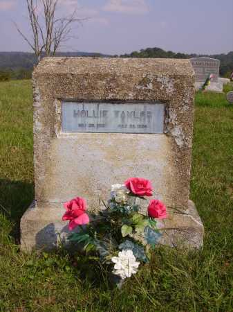 TAYLOR, HOLLIE - Meigs County, Ohio | HOLLIE TAYLOR - Ohio Gravestone Photos