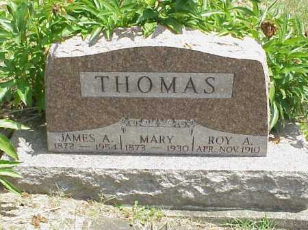 THOMAS, MARY - Meigs County, Ohio | MARY THOMAS - Ohio Gravestone Photos