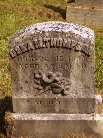 THOMPSON, OSEA M. - Meigs County, Ohio | OSEA M. THOMPSON - Ohio Gravestone Photos